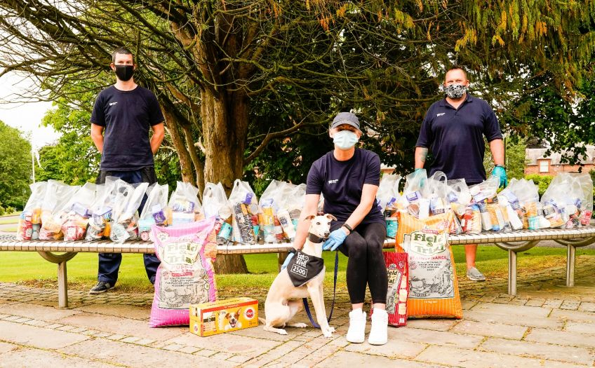 Olly the dog helps mark 25000 EatWell parcels